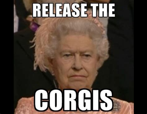The Queen Meme - queen meme hilarious queen memes pictures pics