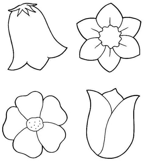 plants coloring pages preschool flower coloring page preschool free flower coloring pages