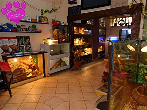 negozi per la casa negozio casa free casa di mq con negozio di mq e