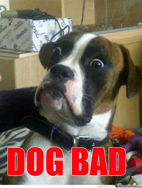 Bad Dog Meme - not bad dog bad by recyclebin meme center