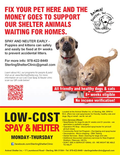 cost of spaying a looking for affordable low cost spay neuter we can help animal shelter inc of
