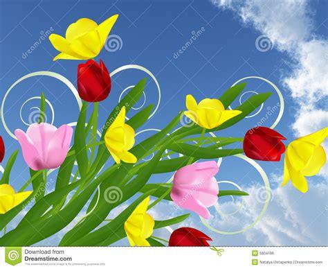 imagenes de rockeras hermosas flores hermosas imagen de archivo libre de regal 237 as