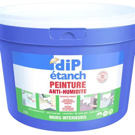 Anti Humidité Mur Interieur 4462 by Peinture Anti Humidit 195 169 Avis