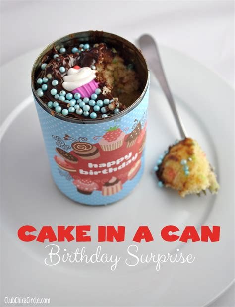 can cake cake in a can birthday diy babysitting academy