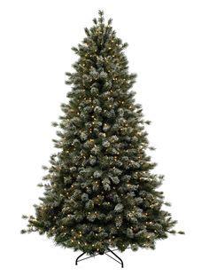 7 1 2 slim arizona fir tree with lights christmas