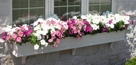 custom made window boxes what size window boxes should you use hooks lattice