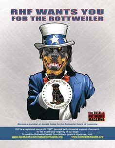 rottweiler health foundation beastie bling by walladoodle custom collars for your we at walladoodle are all