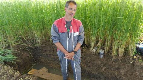 chambre d agriculture dijon g 233 rer la fertilit 233 des sols en agriculture biologique rfi