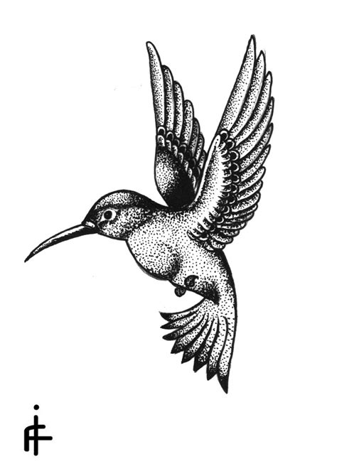black and white hummingbird tattoo designs hummingbird igor frumin flickr