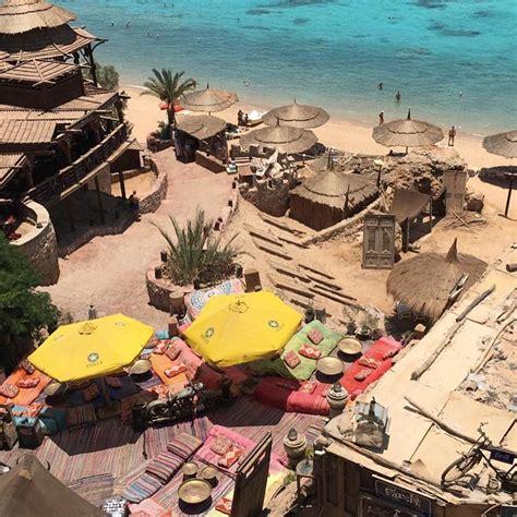 camel dive camel dive club hotel 4 шарм эль шейх turne ua