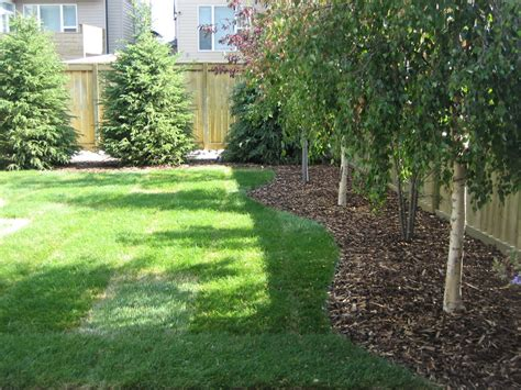 yard tree calgary backyard with trees k landscapes