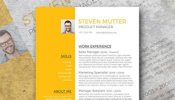 design week cv free professional cv template honeycomb photo