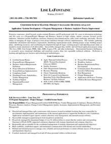 Project Analyst Resume Sle cover letter vendor management