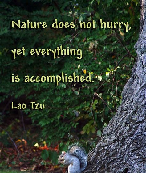 Natures Garden Reading Pa by Fashion Quote Garden Nature
