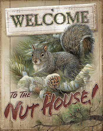 welcome to the nut house squirrel tin sign welcome to the nut house ebay