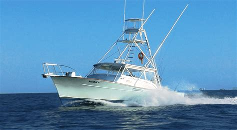 charter boat fishing naples florida charter boat fishing options naples fl