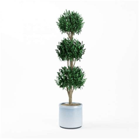 topiary faux potted tree 3d model cgtrader com