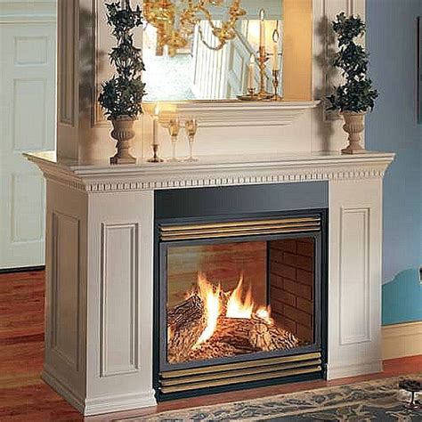 napoleon vent free see thru fireplace fancy fireplaces