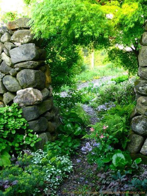 pflanze als sichtschutz 861 553 besten garten natur bilder auf aufladen
