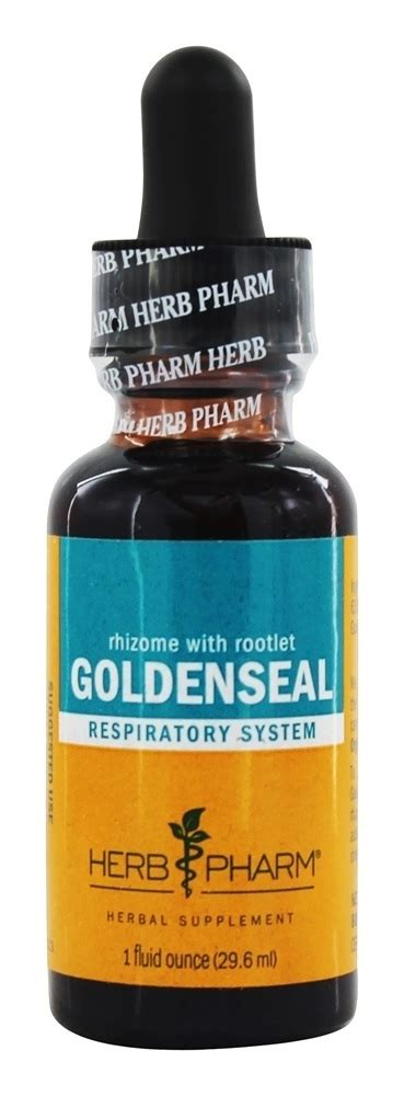 Goldenseal Root For Detox by Buy Herb Pharm Goldenseal Extract 1 Fl Oz At
