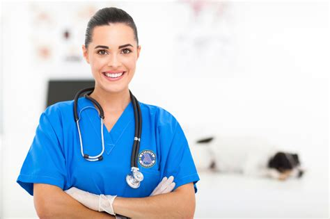 physician assistant resume sle best of sle resume