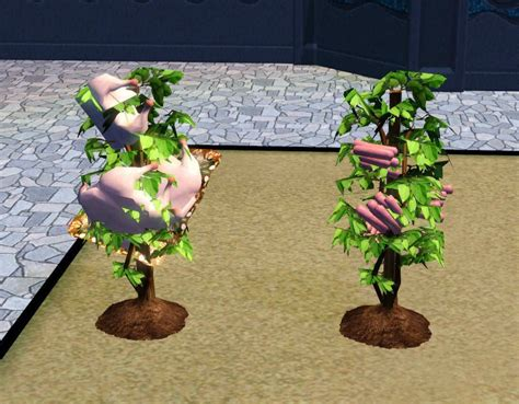 empire sims 3 3 small potted plants by lisen801 mod the sims roast and links plants into the future