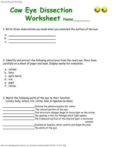Cow Eye Dissection Worksheet Answers by Cow Eye Dissection Worksheet Answer Key Mmosguides
