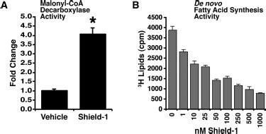chemical genetic induction of malonyl coa decarboxylase in skeletal chemical genetic induction of malonyl coa decarboxylase in skeletal 28 images pone 0020265