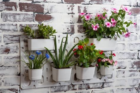 phenomenal decorative wall planters indoor decorating wall garden pots vertical plant hanging flower modular