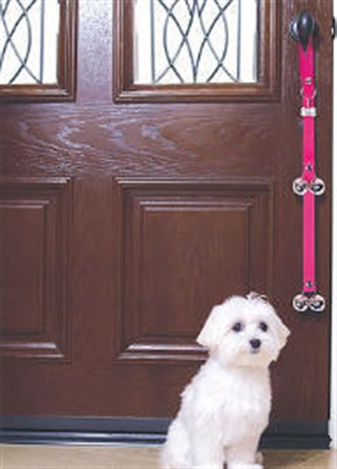 how to to ring bell to go potty puppy or to ring bell to go outside to use bathroom