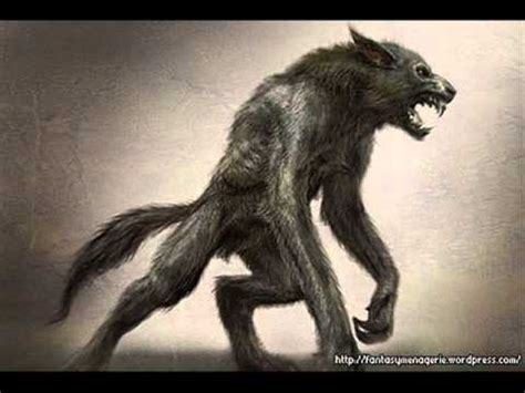 bestia de g 233 vaudan wiki el bestiario fandom powered by