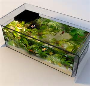 Coffee Table Aquarium   ThisIsWhyImBroke.com