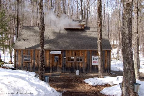 house at sugar mi chiamo maple sugaring and a giveaway
