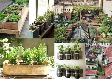 imagenes de huertas urbanas huertos urbanos sostenibilidad exp reales megapost