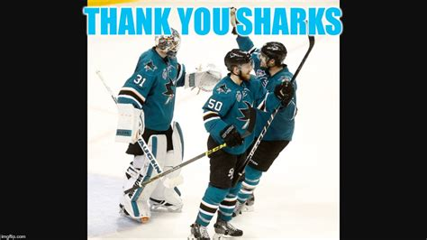 San Jose Sharks Meme - san jose sharks imgflip