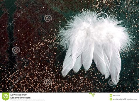 soft white christmas angel wings stock photo image