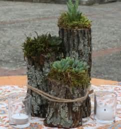 Car Vases Arrangements De Plantes Succulentes Conseils D Entretien