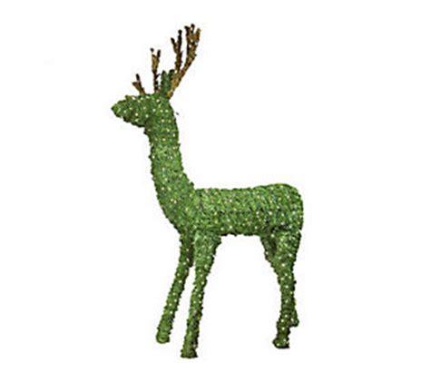 deer topiary outdoor prelit topiary deer lawn sculpture qvc