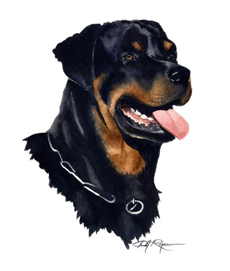 rottweiler page rottweiler watercolor painting print signed by artist