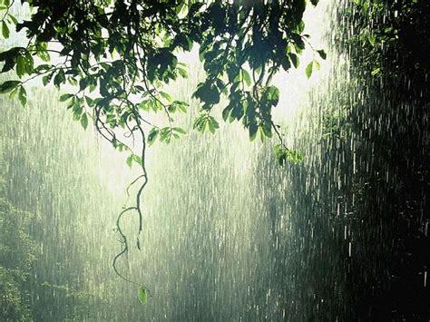 imagenes de otoño lloviendo lloviendo fondos de pantalla gratis
