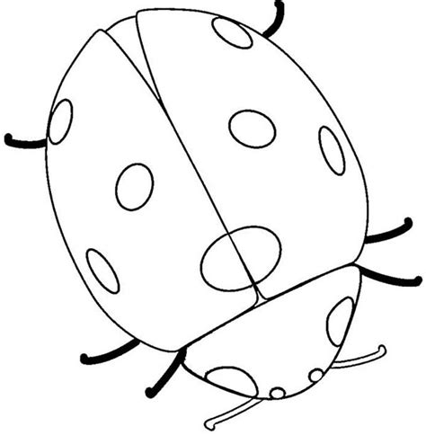 very big colouring and 140956651x ladybird free colouring pages