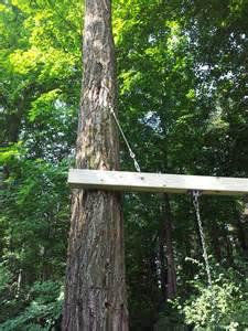 chad s workshop swing between 2 trees