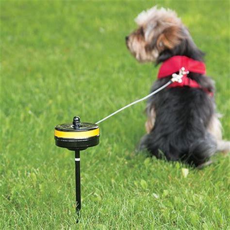 ran out of cable ties techsupportgore howard pet piquet et c 226 ble r 233 tractable pour chien