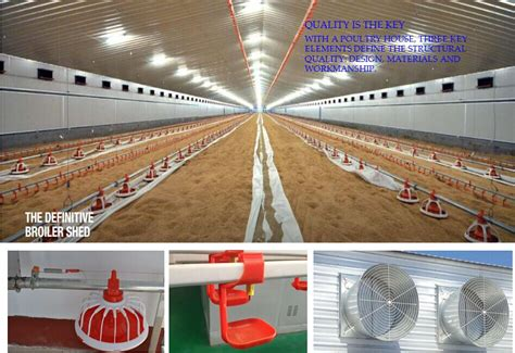 Controlled Poultry Sheds Design by Low Cost Poultry Shed Farm For Broiler Layer