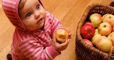 omogeneizzati di carne fatti in casa omogeneizzati di frutta e verdura fatti in casa la