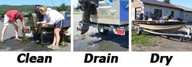 boat drain cleaner cleaning and disinfection techniques q a for boaters nys