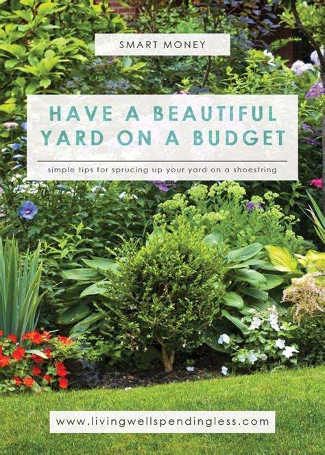 landscaping backyard ideas inexpensive best 25 cheap landscaping ideas ideas on pinterest diy