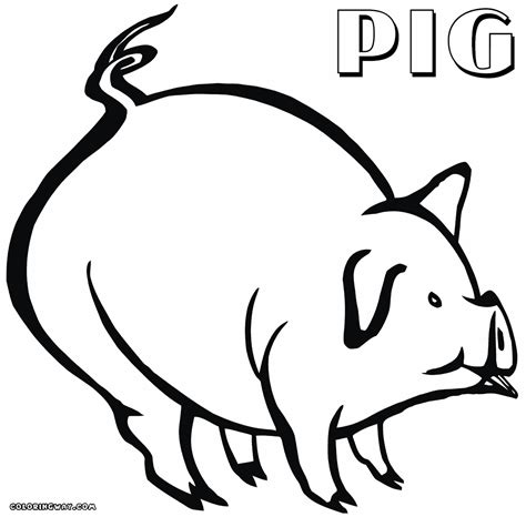 fat pig coloring page fat pig coloring coloring pages