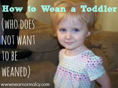 Sunday Funnies Weaning A Toddler by Article But I Am Gonna Try It How To Wean A