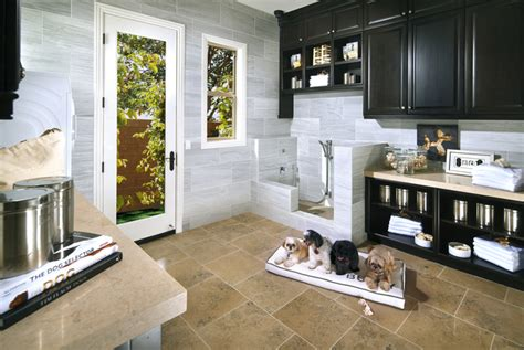 house amenities pets amenities rising trend for homebuilders daily mail
